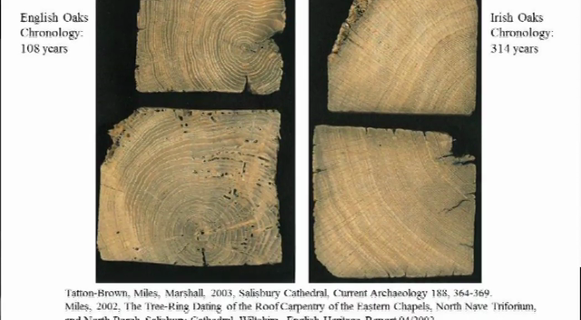 Femte foredrag: Skovens tilstand, med fokus på vikingetiden  årringsdata