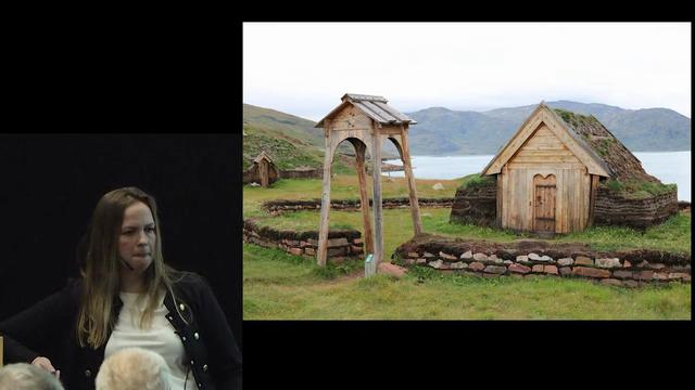 Viking- ran,ild og sværd